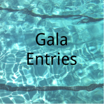 4 Towns Gala Ruthin – 8th July